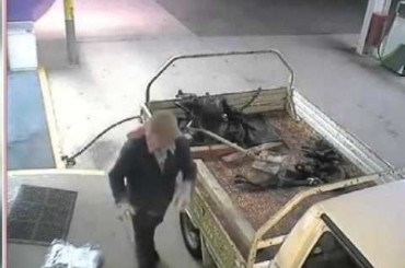 Is This the Worst Robber Ever?