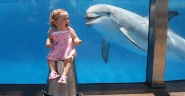 33 Photos That Prove Timing Is All We Need!