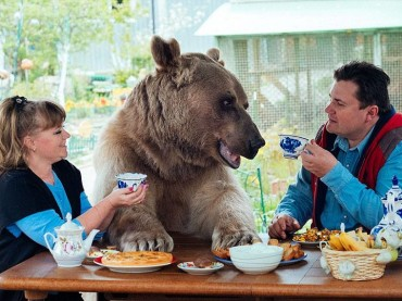 10 Photos of a Happy Russian Family: Mom, Dad and… The Bear