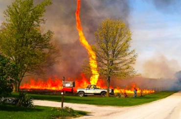 In the Line of Firenadoes