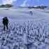 Unusual Sightings: Spiky Snow