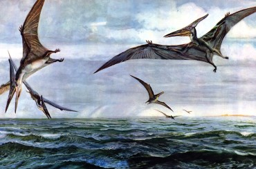 Clues to the Evolution of Birds' Beaks Found in Ancient Dinosaur Fossils