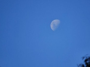 Why Does the Moon Sometimes Come Out During the Day?