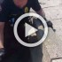 This Cop Saves 11 Ducklings From An Awful Death