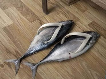 These Are The Most Bizarre Pairs of Shoe Ever Invented!